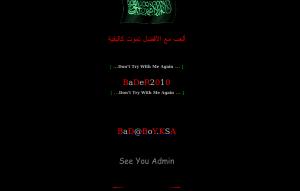 bader2010